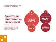 Canadian Insights - 2013 Global Innovation Survey