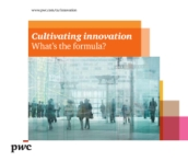 Cultivating innovation: What's the formula? The innovation master plan framework