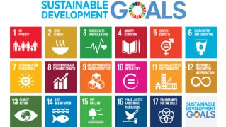 Pursuing the Sustainable Development Goals