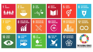 Pursuing the Sustainable Development Goals: Global Annual Review 2016: PwC