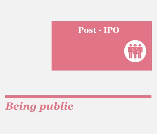 Ipo publicly listed company needs to be audited