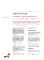 Investor View  - Seven principles for risk disclosures