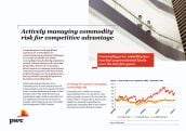 Actively Managing Commodity Risk for Competitive Advantage