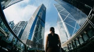 Webinarreihe für den Finanzsektor