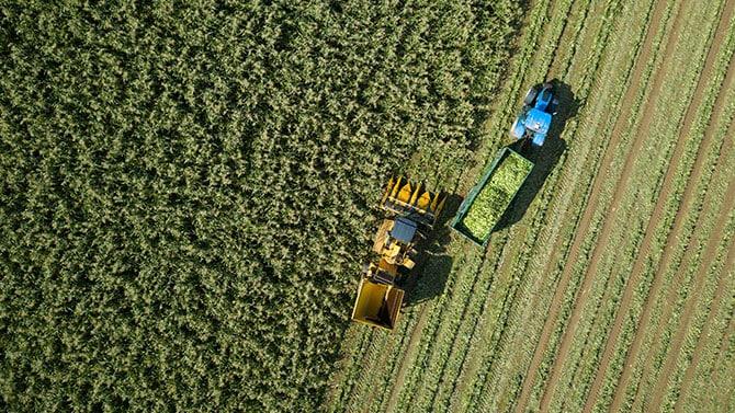 O futuro da indústria agroalimentar