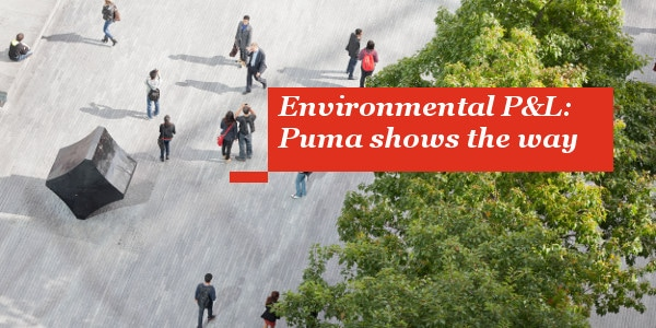 Environmental P&L: Puma shows the way