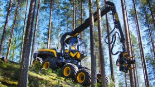 Logging on: Tradition and innovation in Finland