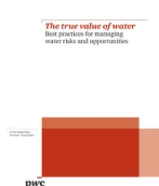 The true value of water