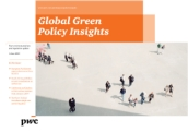 Global Green Policy Insights (Jun 2013)