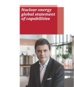 Nuclear energy global statement of capabilities