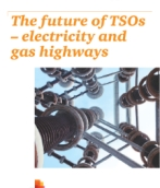 The future of TSOs ─ electricity and gas highways