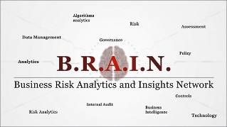 「B.R.A.I.N.」(Business Risks Analytics Insights Network)