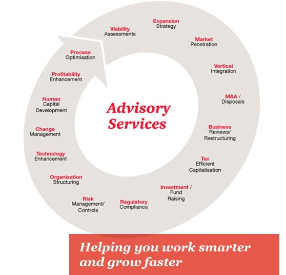 Infographic: Advisory Services offering diagram