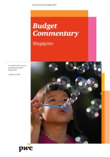 Budget Commentary 2011