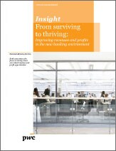 From surviving to thriving: Improving revenues and profits in the new banking environment