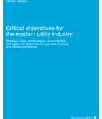 Critical imperatives for the modern utility industry