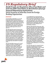 Dodd-Frank act resolution plan final rule and interim FDIC final rule on resolution of large insured depository institutions