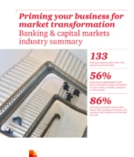 17th Annual Global CEO Survey: Banking & Capital Markets Industry Summary