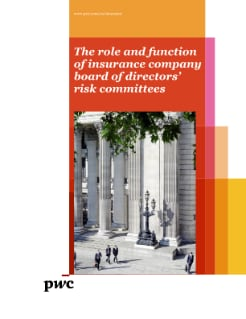 The role and function of insurance company risk committees