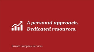 Private Company Services clients - who they are and how we help them