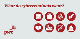 What do cybercriminals want?