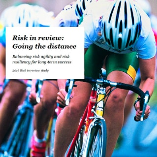 2016 Risk in review study