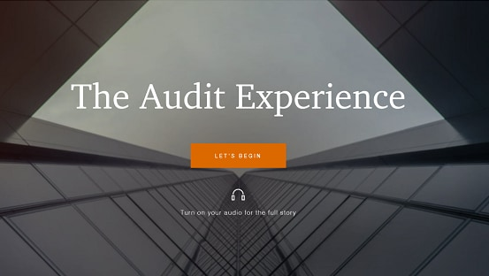 Audit and assurance services for private companies: PwC