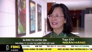 FBNC interview with Dinh Thi Quynh Van on private sector growth